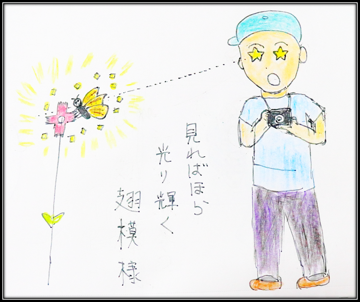 f:id:butterflyer:20190912002450p:plain