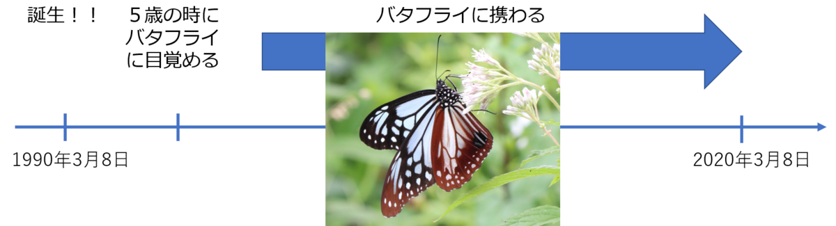 f:id:butterflyer:20200308214903p:plain