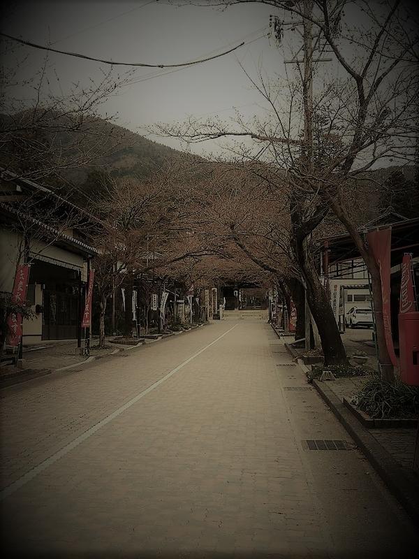 f:id:butuyokuko:20200407131502j:plain