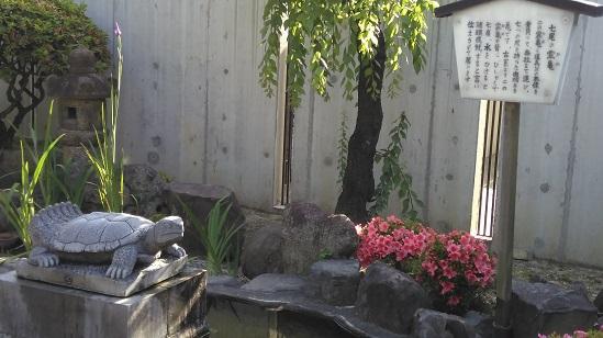 f:id:butuyokuko:20201221043443j:plain
