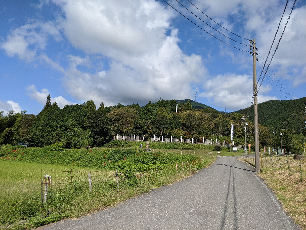 f:id:butuyokuko:20210128180225p:plain