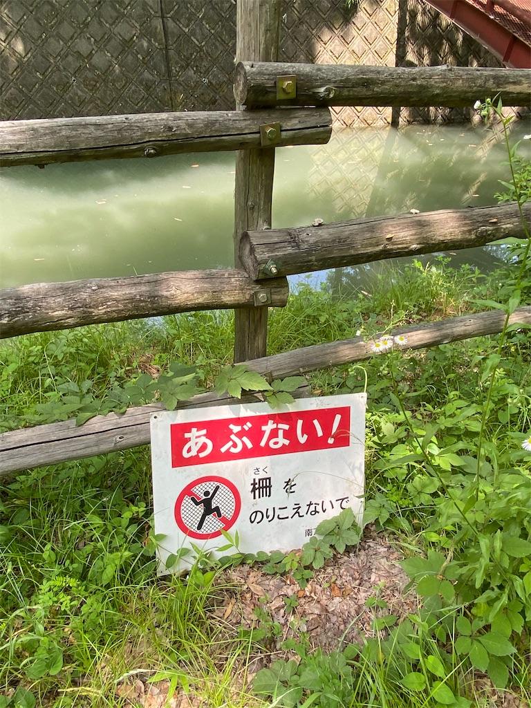 f:id:buu_baku:20200615222510j:image