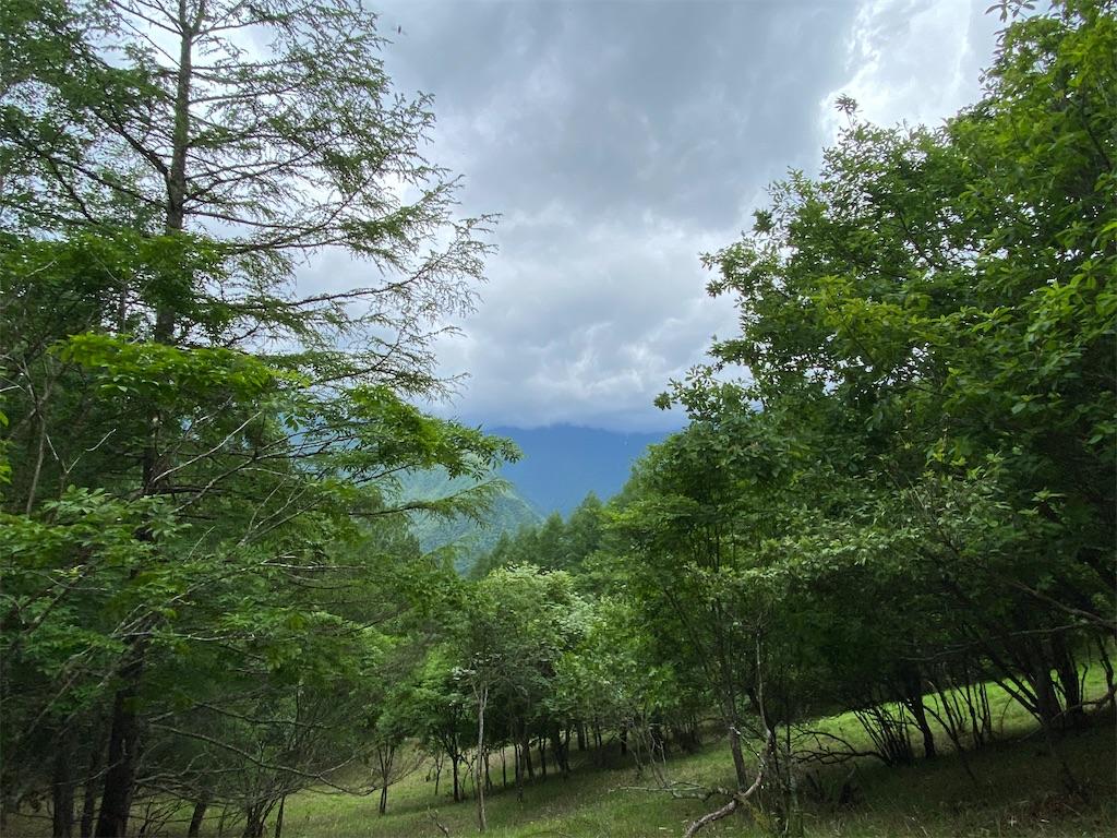 f:id:buu_baku:20200626140402j:image