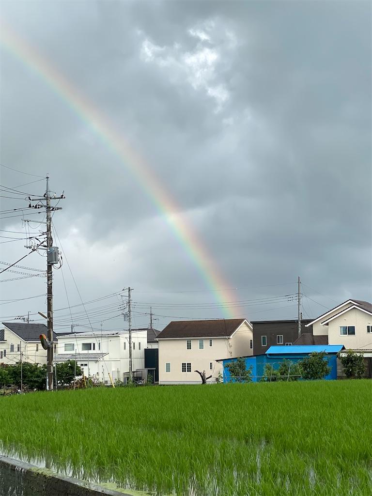 f:id:buu_baku:20200630103753j:image