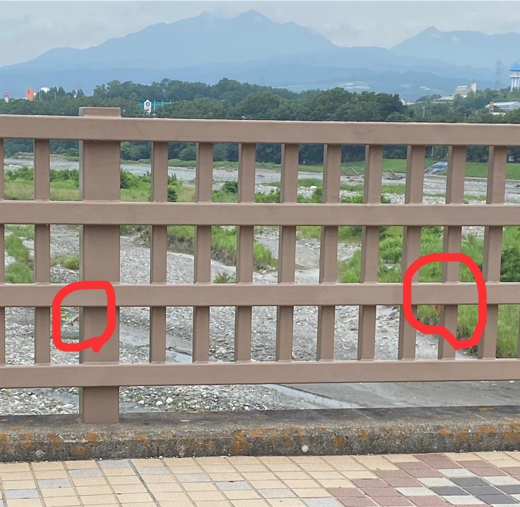 f:id:buu_baku:20200630155533j:image