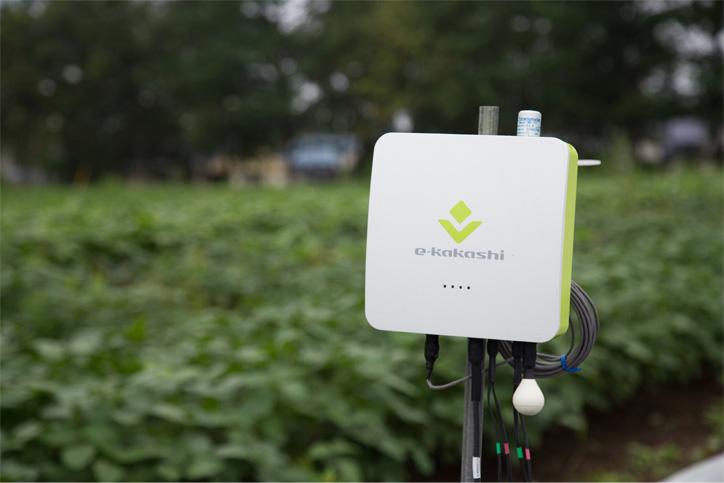 農業AIブレーン「e-kakashi」のセンサーノード