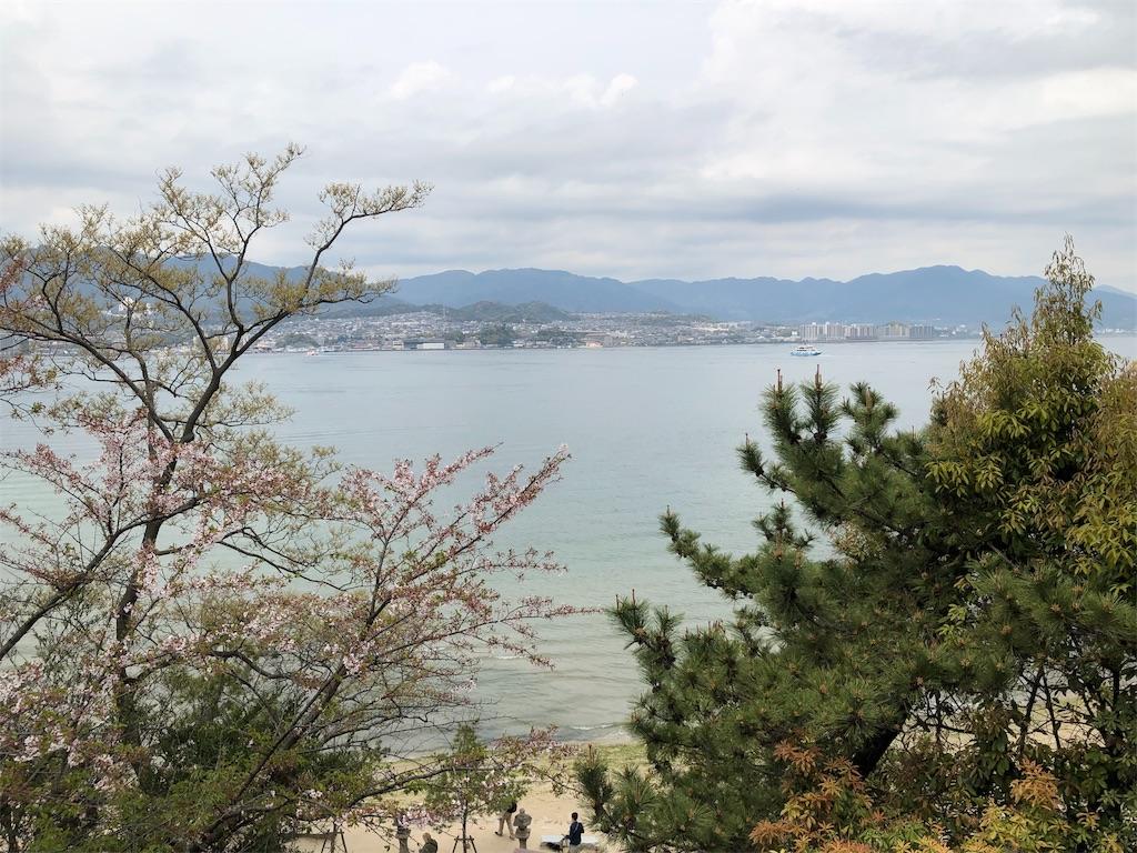 f:id:by_nagi:20190414213453j:image