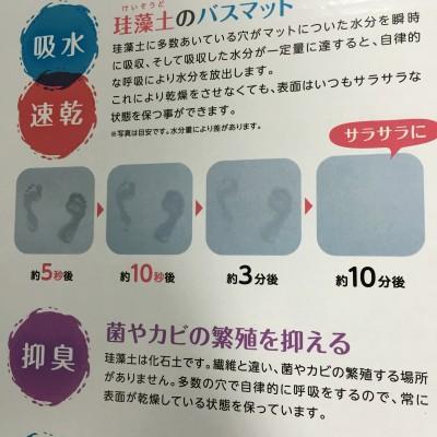 f:id:byousatsu-pn2:20160604092640j:plain
