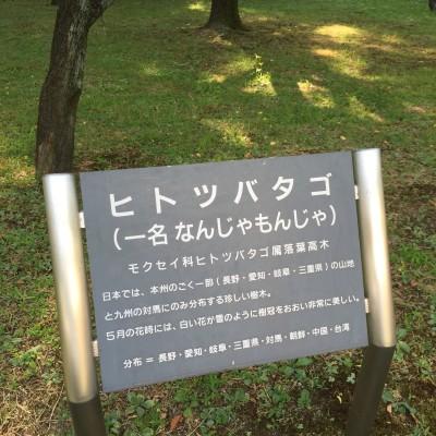 f:id:byousatsu-pn2:20160815000929j:plain