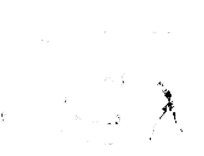 f:id:byousatsu-pn2:20170521170903p:plain