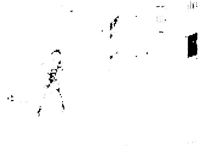 f:id:byousatsu-pn2:20170521170906p:plain