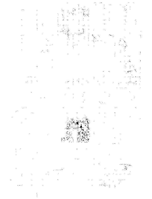 f:id:byousatsu-pn2:20170521213744p:plain