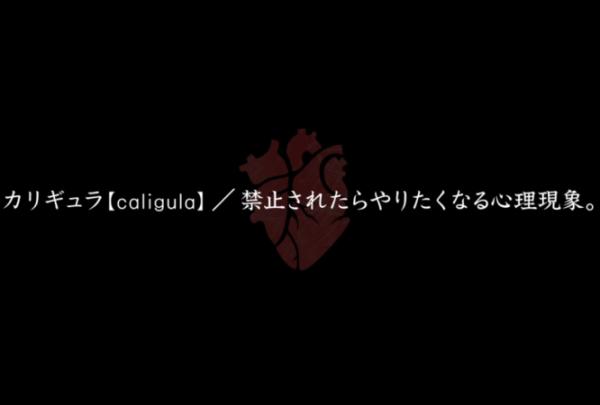 f:id:byousatsu-pn2:20170716215051p:plain
