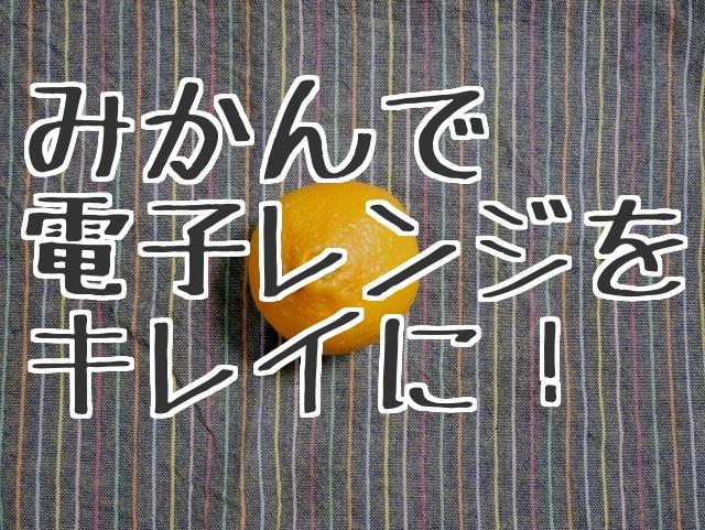 f:id:byousatsu-pn2:20180114211758j:plain