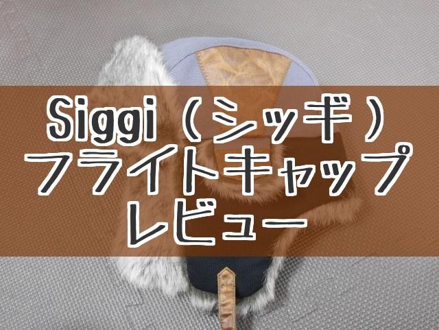 f:id:byousatsu-pn2:20180114214215j:plain