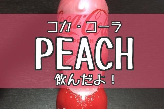 f:id:byousatsu-pn2:20180124225222j:plain