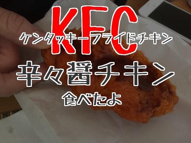 f:id:byousatsu-pn2:20180218212048j:plain