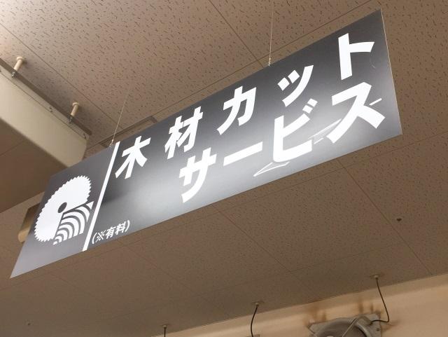 f:id:byousatsu-pn2:20190103225115j:plain