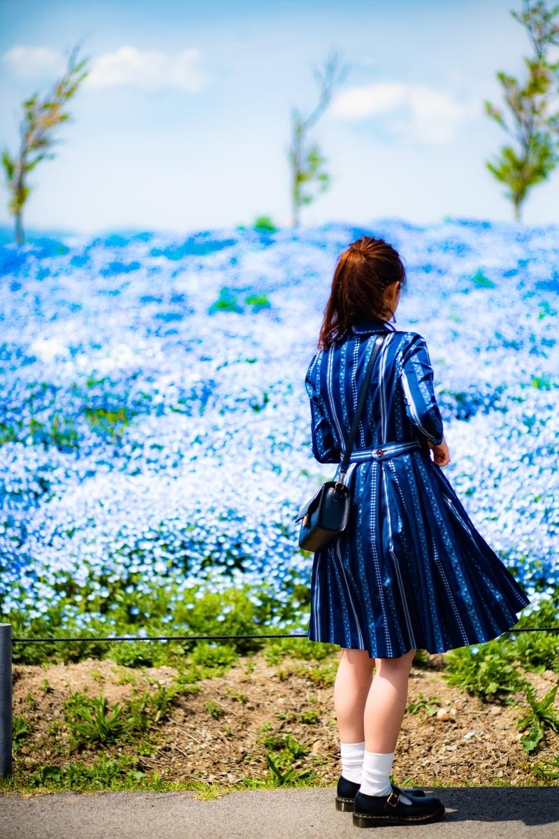 f:id:c-mitsuba:20190418131207j:plain
