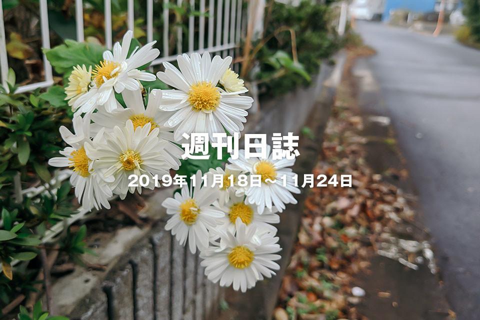 f:id:c-miya:20191127164654j:plain