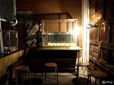 f:id:c-mizukawa:20090226194345j:image
