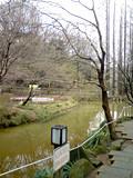 f:id:c-mizukawa:20090303173146j:image