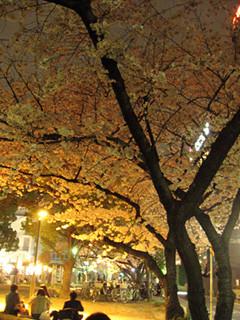 f:id:c-mizukawa:20120411002014j:image