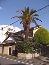 f:id:c-mizukawa:20120411014353j:image