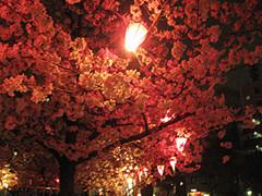 f:id:c-mizukawa:20120411020225j:image
