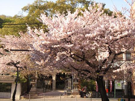 f:id:c-mizukawa:20120414232200j:image