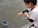 f:id:c-mizukawa:20120727231412j:image