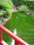 f:id:c-mizukawa:20120812001118j:image