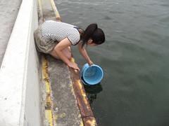 f:id:c-mizukawa:20120813234806j:image