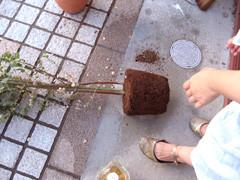 f:id:c-mizukawa:20120821231504j:image