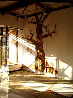 f:id:c-mizukawa:20120823124850j:image