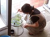 f:id:c-mizukawa:20120904001658j:image