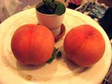 f:id:c-mizukawa:20120904014633j:image