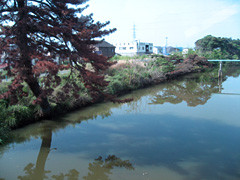 f:id:c-mizukawa:20120904030636j:image