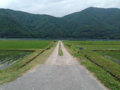 f:id:c-mizukawa:20130611201646j:image:w240