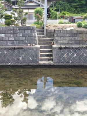 f:id:c-mizukawa:20130612123852j:image:w160