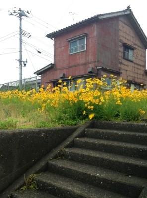 f:id:c-mizukawa:20130618154347j:image:w120