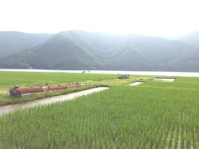f:id:c-mizukawa:20130702003404j:image:w240