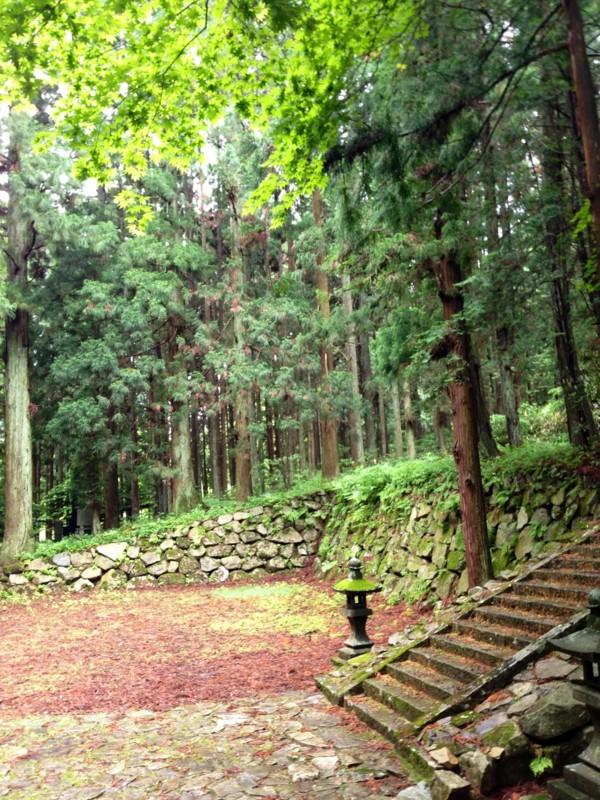 f:id:c-mizukawa:20140614121102j:image:w160