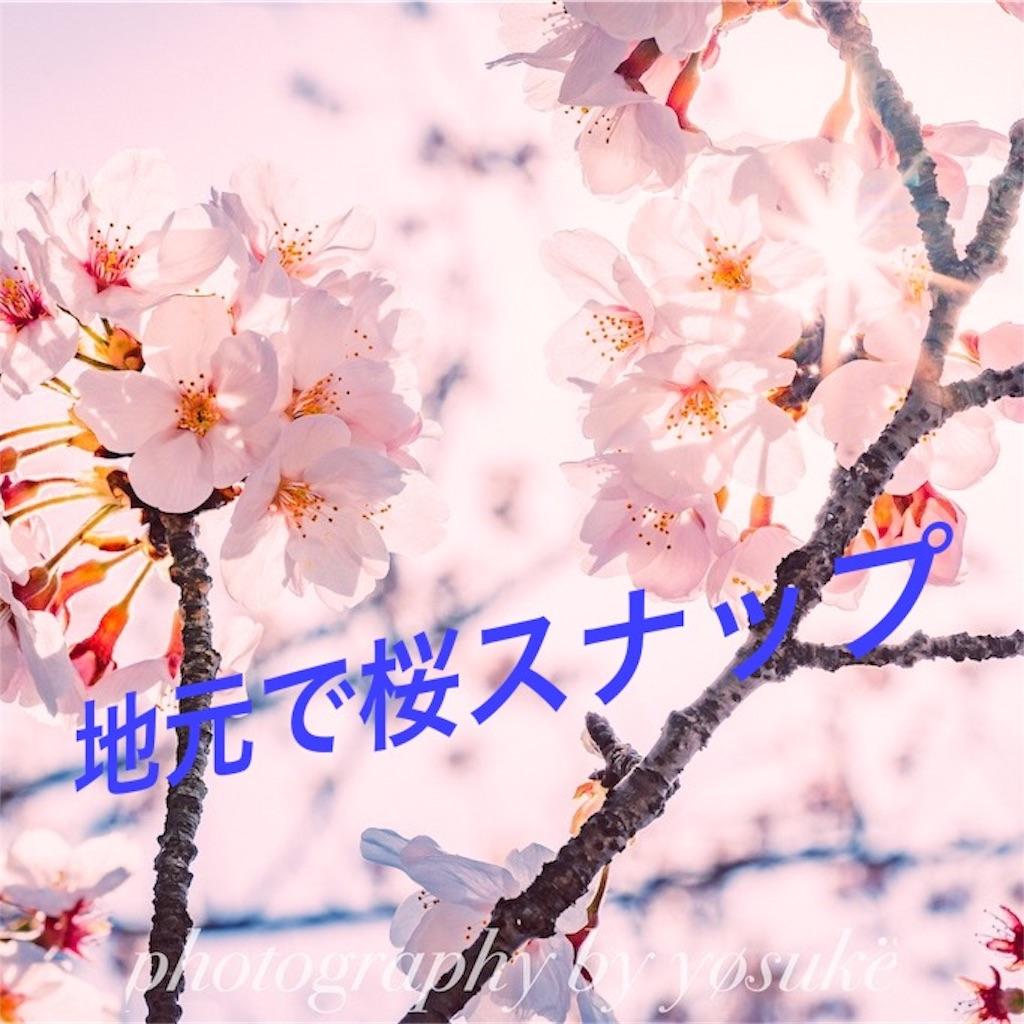 f:id:c-o-s-m-o-s:20190424212634j:image