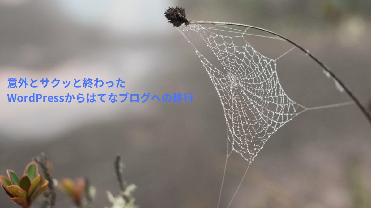 f:id:c-sasuke:20190430232142p:plain
