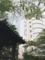 ザ・プリンスさくらタワー 庭