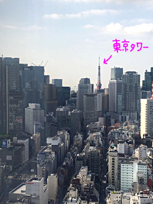 ホテルニューオータニ東京 タワーブッフェ朝食 景色2