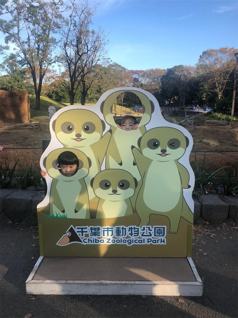 f:id:ca-san_diary:20191118222314j:image