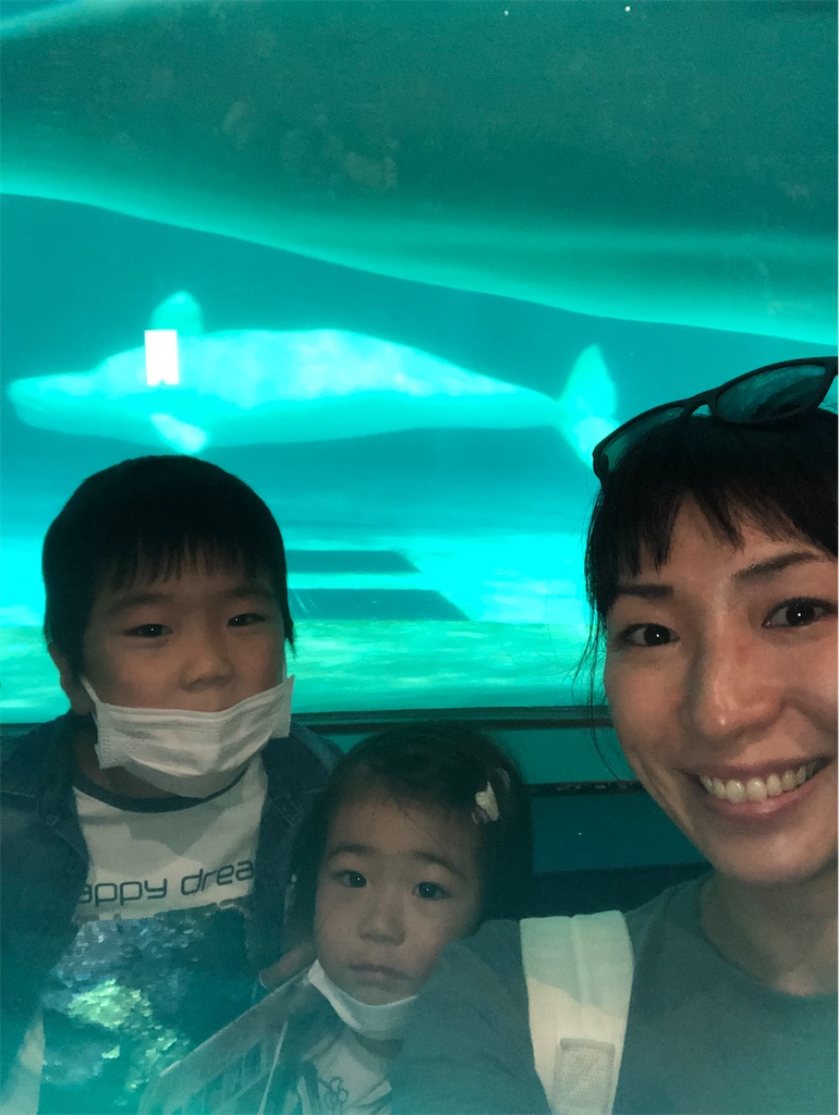 f:id:ca-san_diary:20201112111754j:image