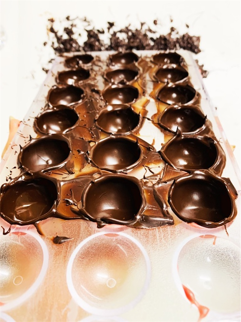 f:id:cacaotree:20210126083434j:image